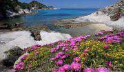 spiaggia-di-cotoncello-elba