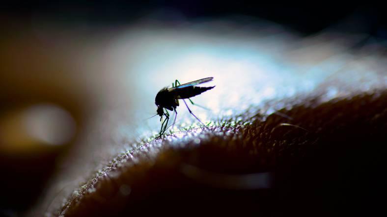 bambina si ammala di malaria