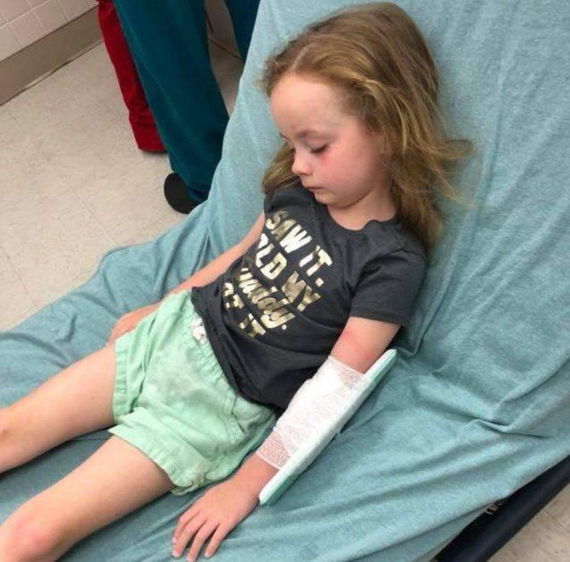 Una bambina è stata morsa da una zecca: la mamma lancia un appello (FOTO)