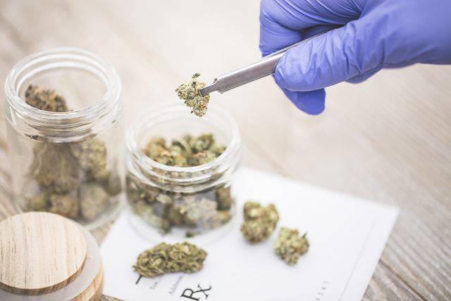 cannabis come farmaco