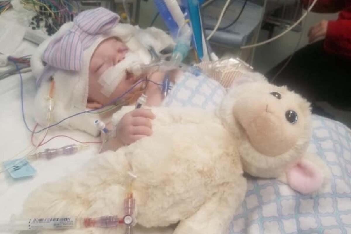 bambina di 3 mesi in coma
