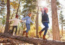 bambini abbandonati nel bosco