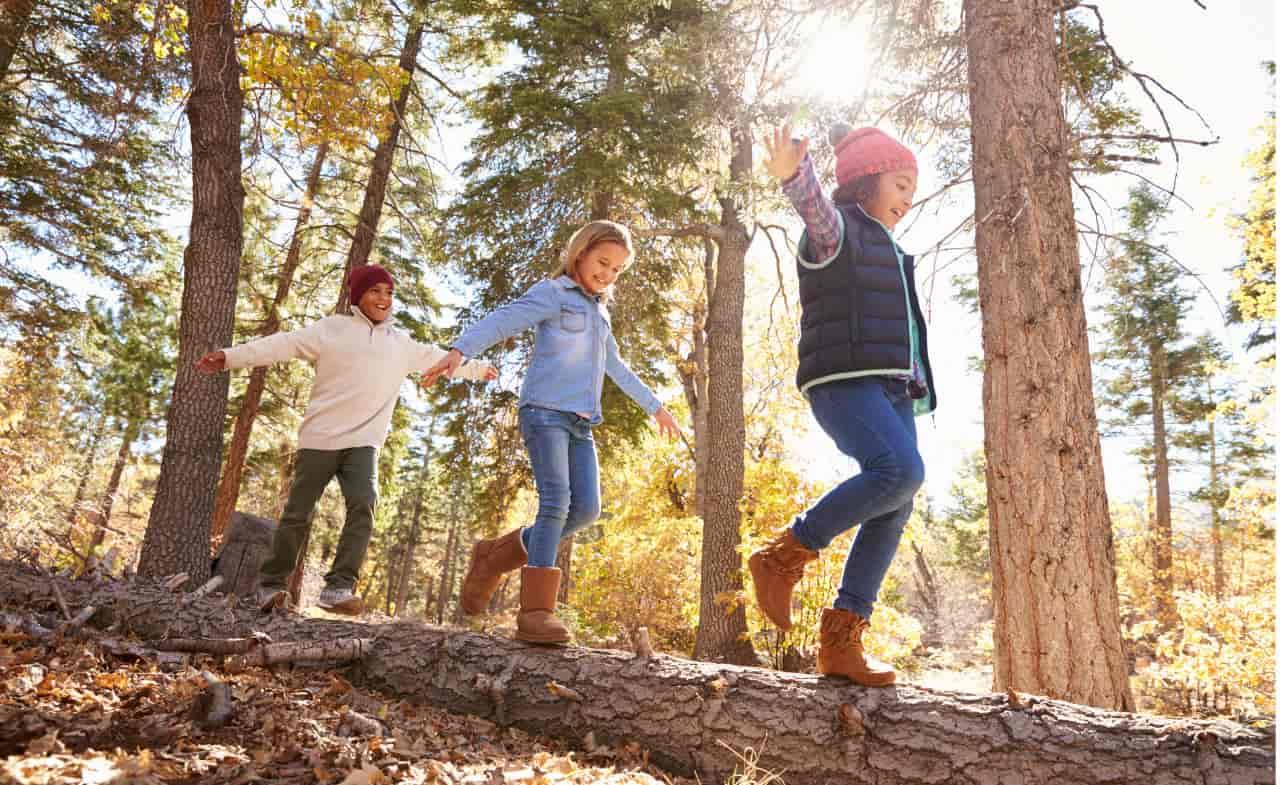 boschi dove andare bambini