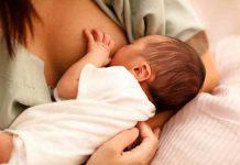 latte materno cura il cancro