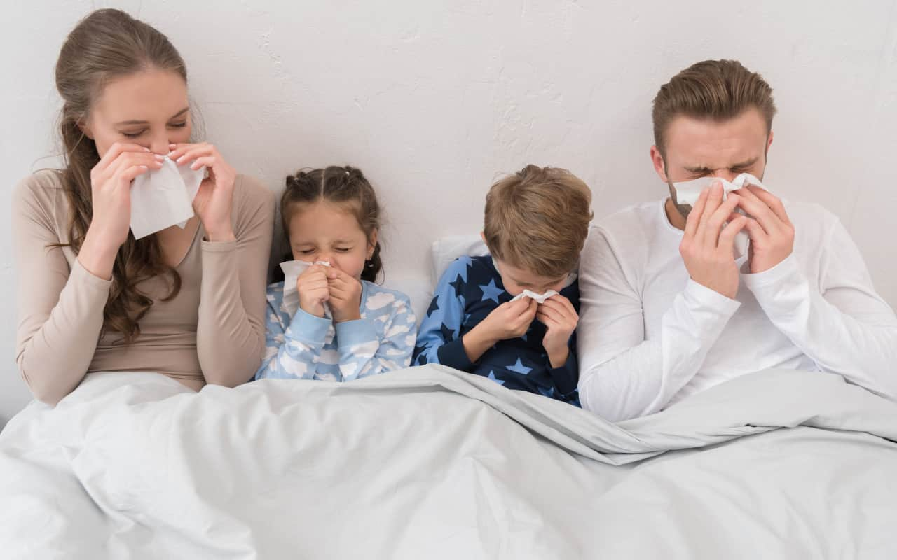 influenza dati oms