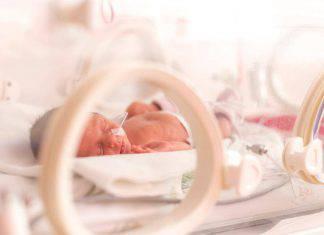 neonati prematuri mani di mamma