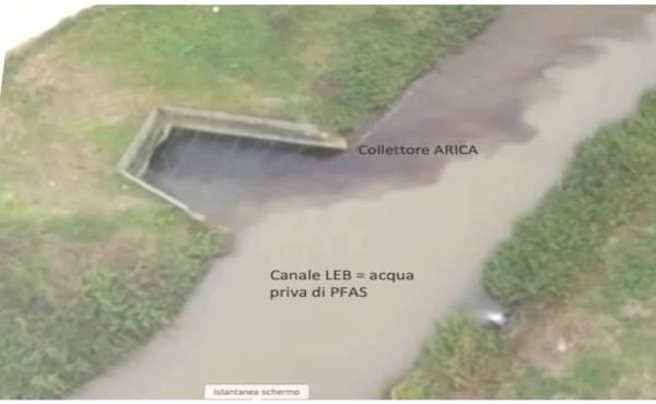 pfas acqua contaminata