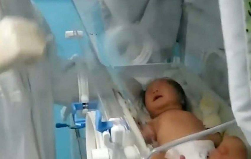 neonata guarita coronavirus