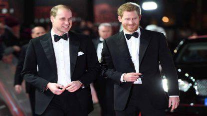 Coronavirus William e Harry