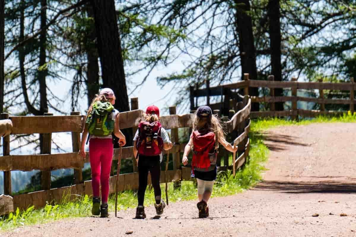 viaggio bambini boschi