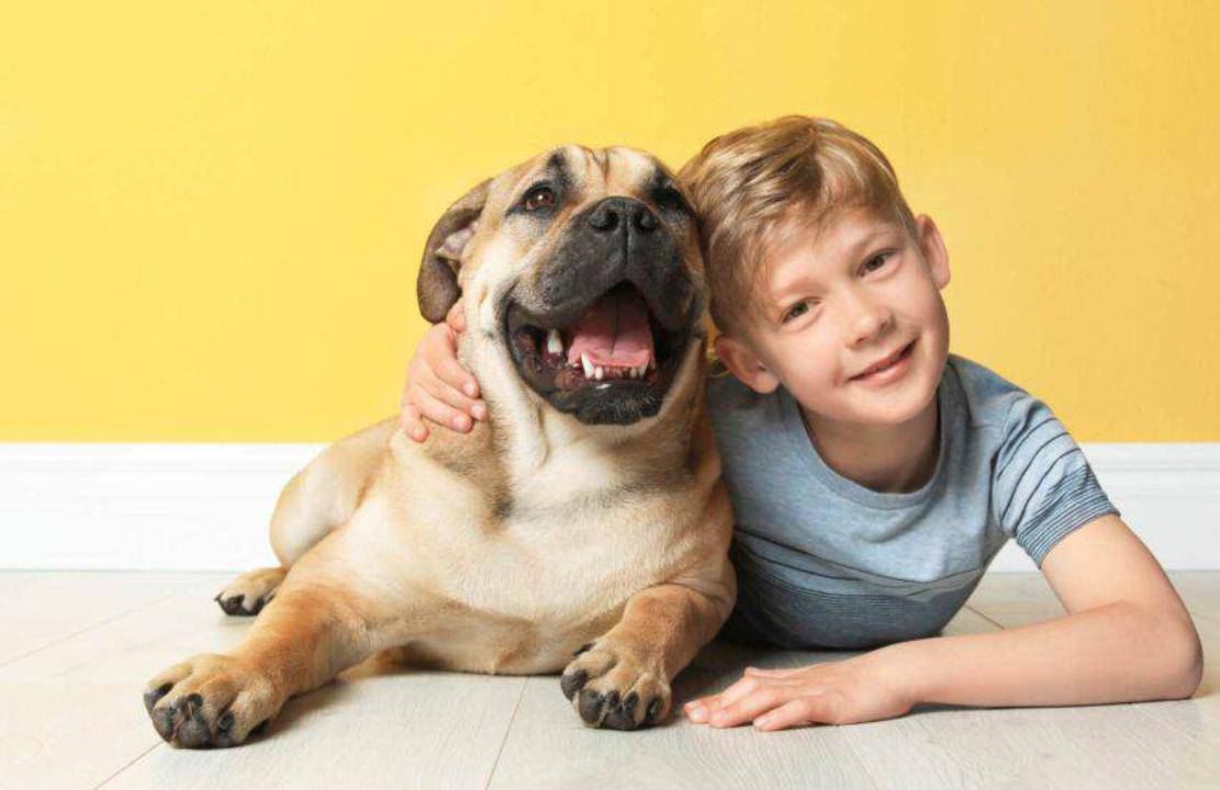 cane in famiglia regole propri figli