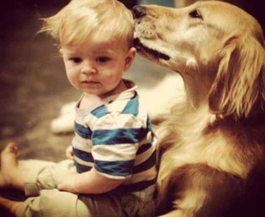 cane regole propri figli