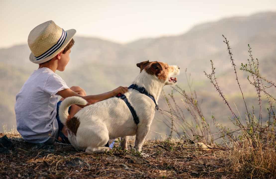 Dove andare in vacanza con un cane e dei bambini in famiglia