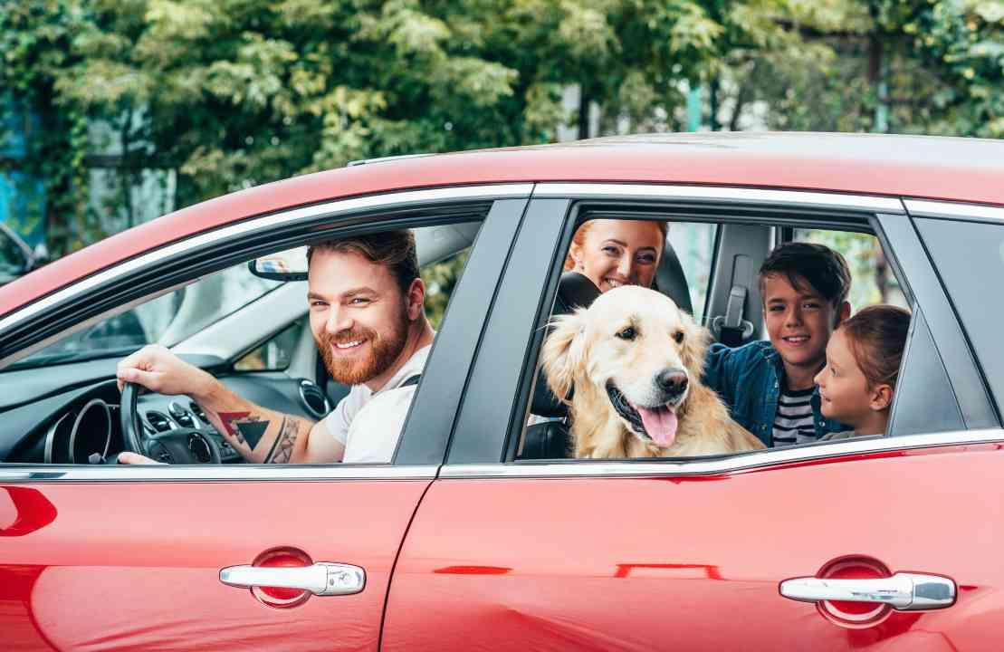 poche regole viaggiare in auto coi bambini