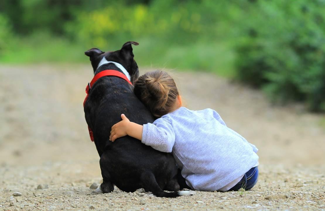 bambini e animali rapporto