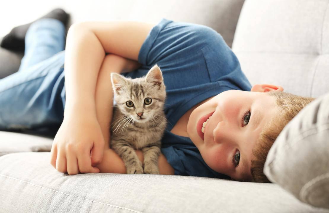 gatti bambini cosa occorre