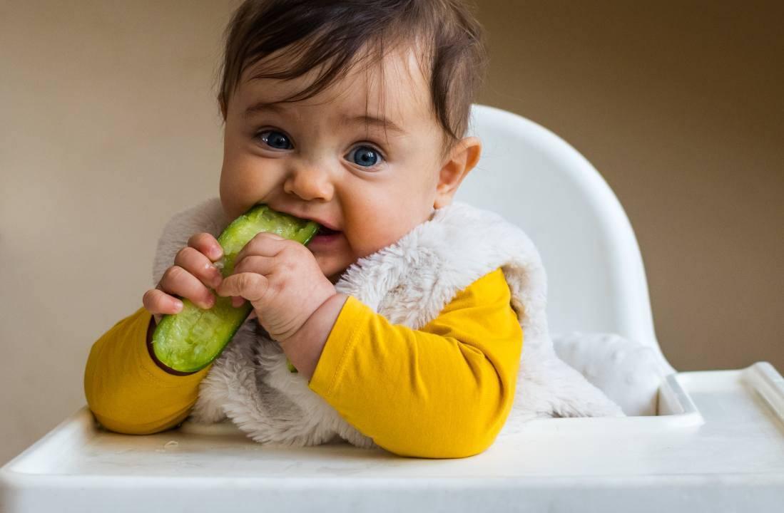 non sono necessari i baby food