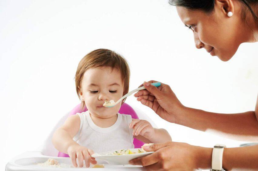 Baby sitter novità contratto