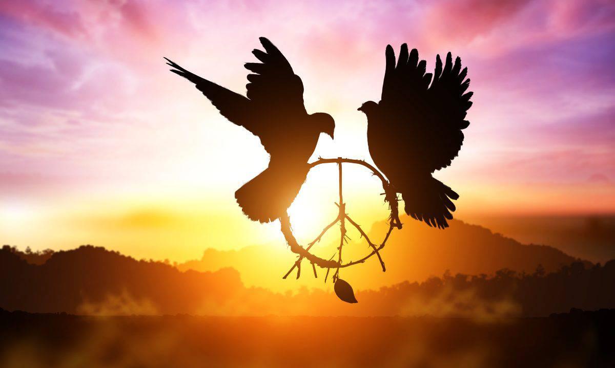 giornata internazionale della pace 21 settembre