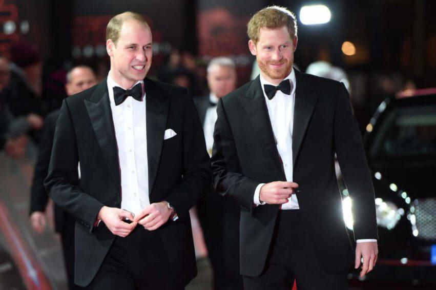 Principi Harry e William