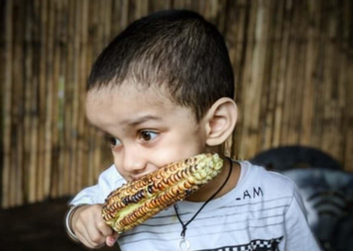 dieta vegana obesità e malnutrizione