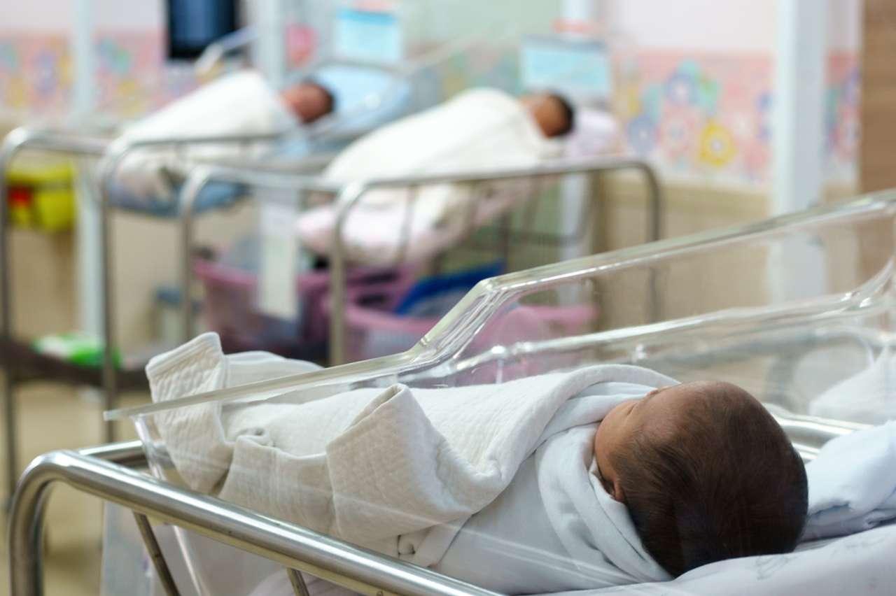 Calo di nascite