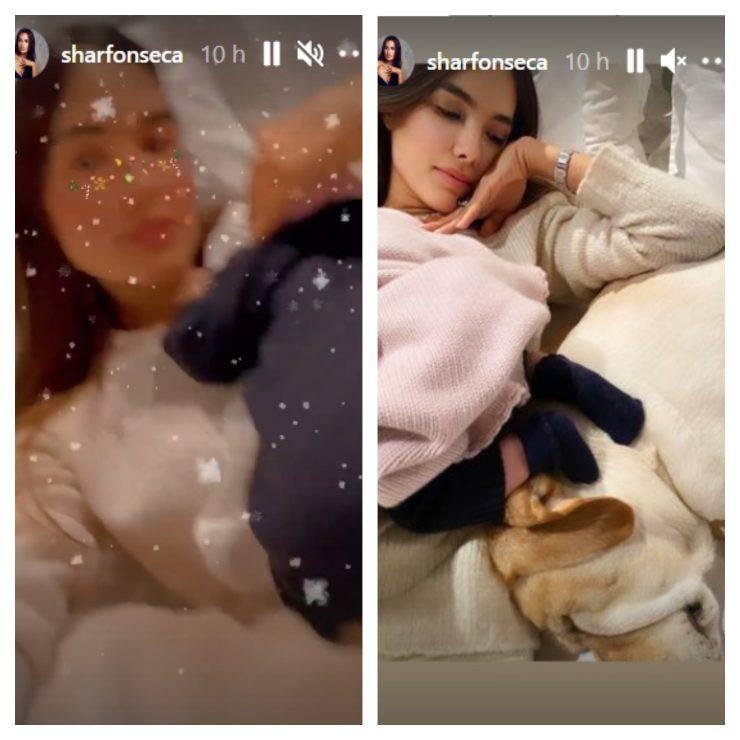 Sharon Fonseca Instagram