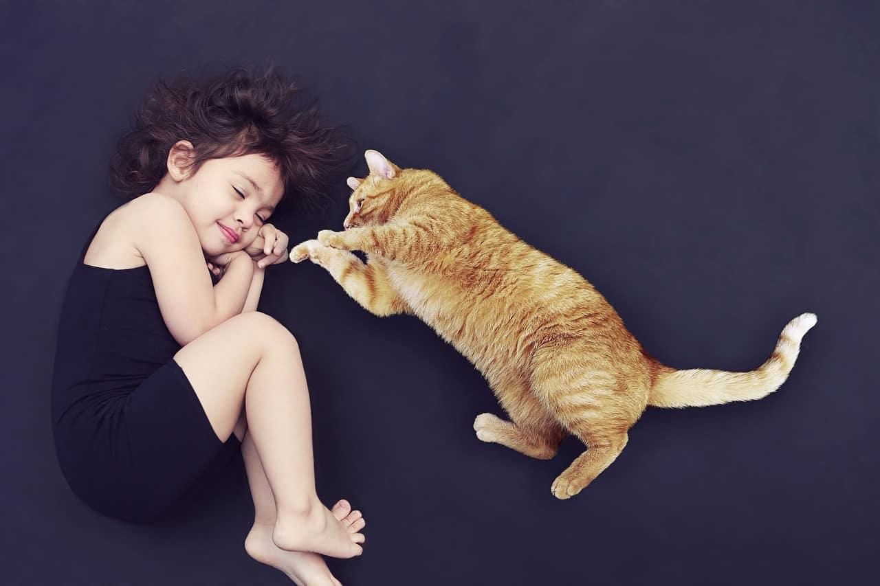 razza gatto bambini