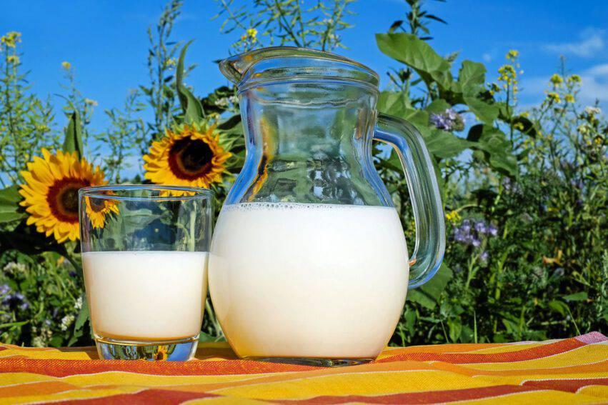 Tipologie di latte