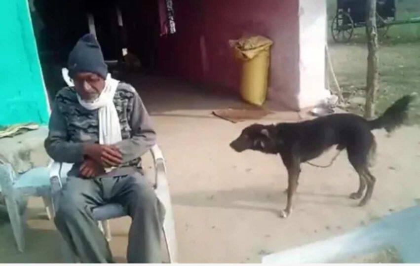 papà e l'eredità al cane